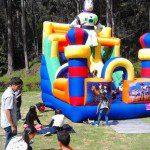 alquiler saltarines Bogota